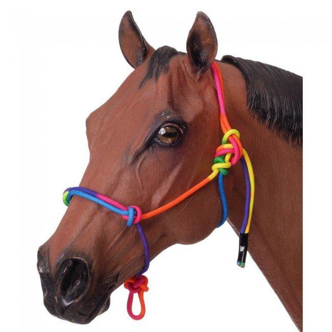 Cabresto Para Cavalo Arco-Íris de Corda com Charroa