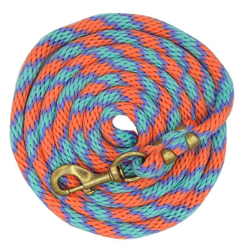 Cabresto Turquesa com Guia Colorida Weaver Importado