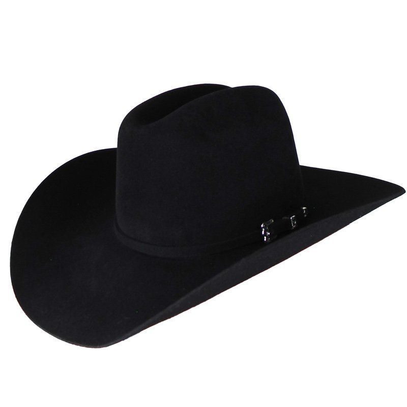 Chapéu de Pelo Rodeo King 20X Gold