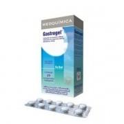Gastrogel com 20 Comprimidos Mastigaveis