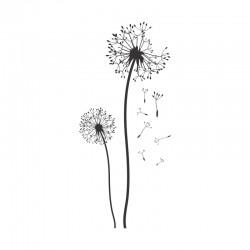 Adesivo de Parede Dandelion