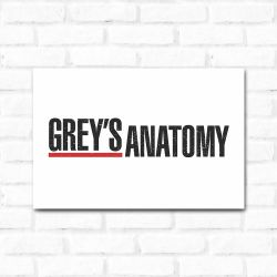Placa Decorativa Grey's Anatomy 3