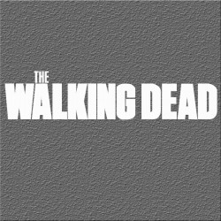 Espelho Decorativo The Walking Dead