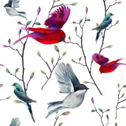 Papel de Parede Birds in Nature