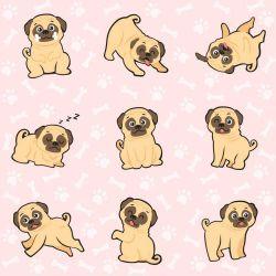 Papel de Parede Pug Girl