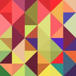 Papel de Parede Rosemund Big Colors
