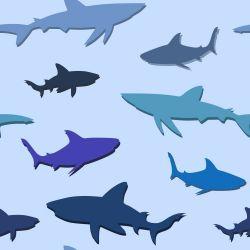 Papel de Parede Sharks