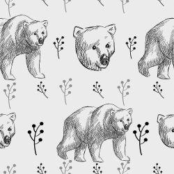 Papel de Parede Urso Desenho