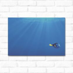 Placa Decorativa Dory 2