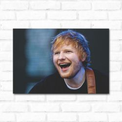 Placa Decorativa Ed Sheeran 2