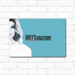 Placa Decorativa Grey's Anatomy
