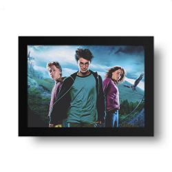 Placa Decorativa Harry Potter 1