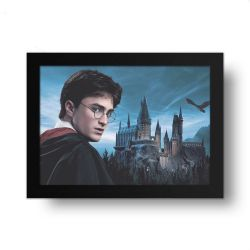 Placa Decorativa Harry Potter 2