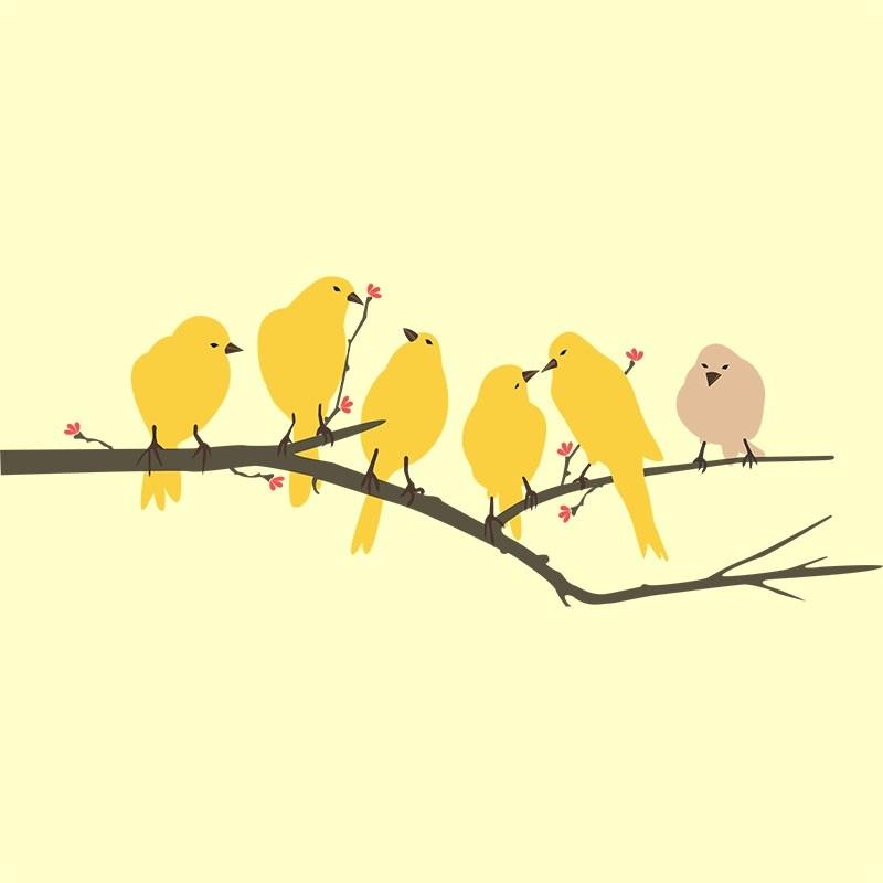 Adesivo de Parede Pássaros e galho
