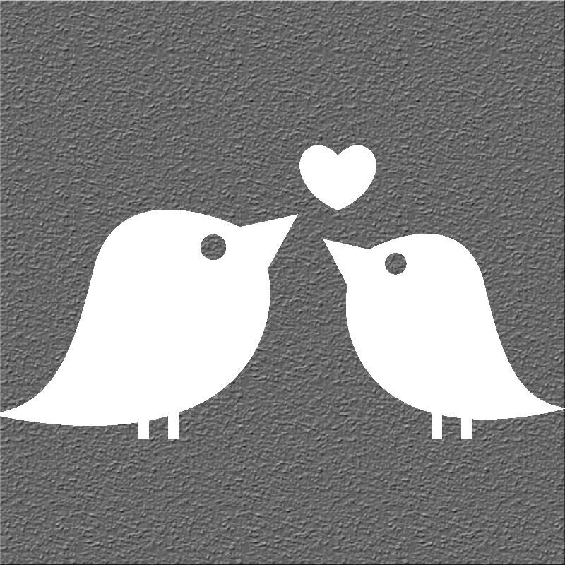 Espelho Decorativo Love Birds