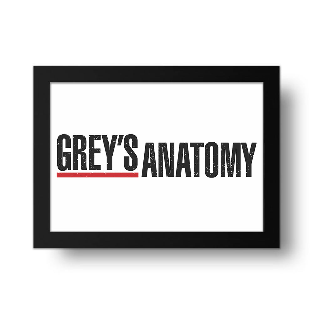 Placa Decorativa Grey's Anatomy 3