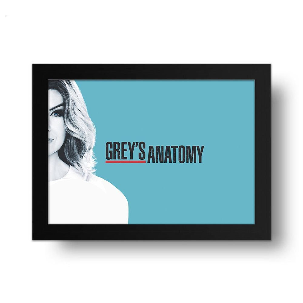 Placa Decorativa Grey's Anatomy