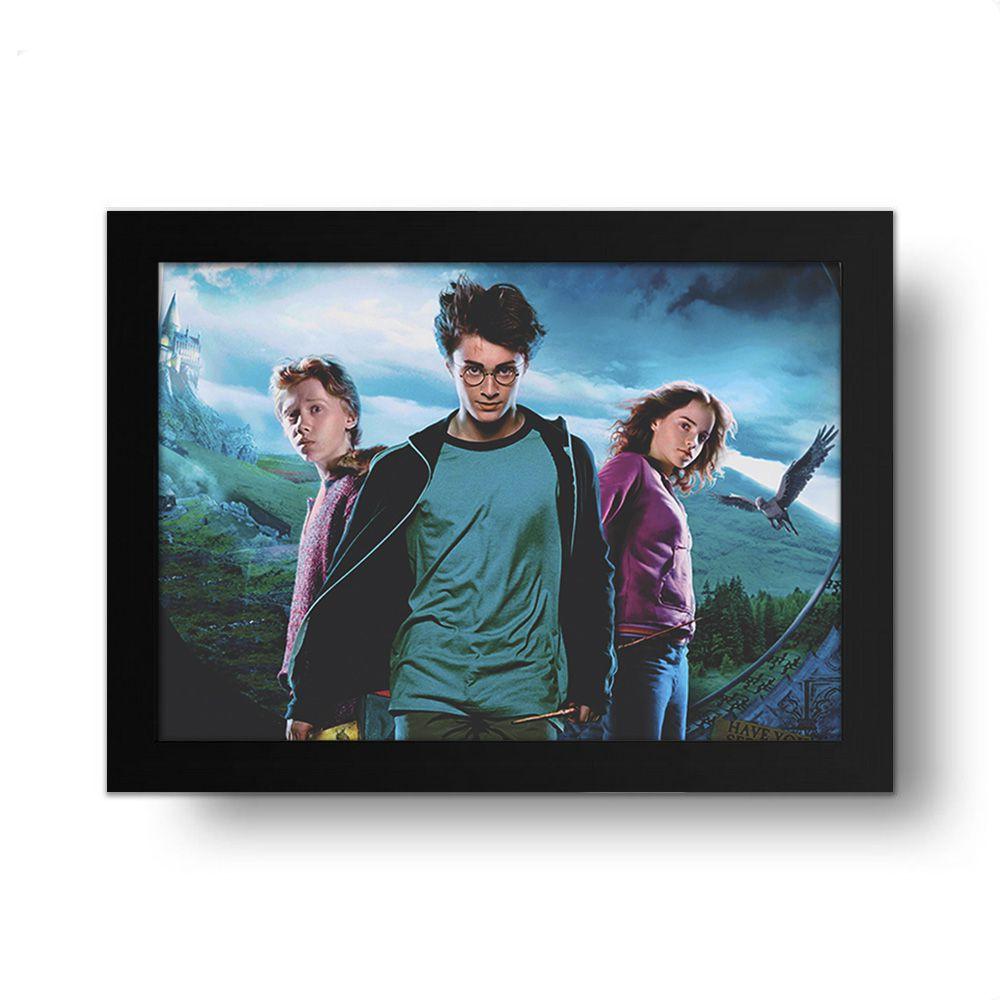 Placa Decorativa Harry Potter 1