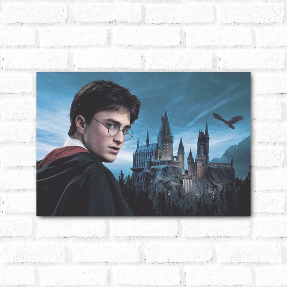 Placa Decorativa Harry Potter 2