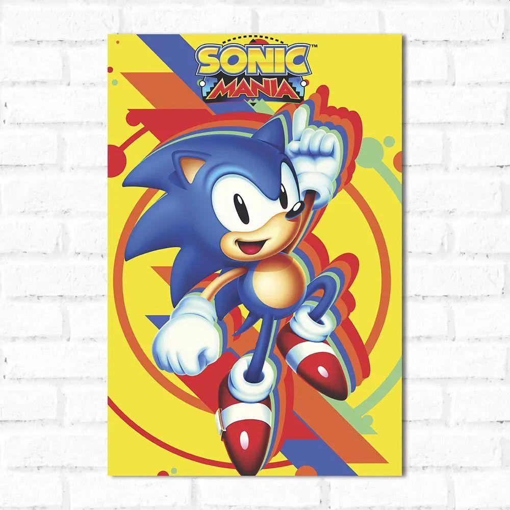 PROMOÇÃO - Placa Decorativa Sonic 1 (20x30cm)