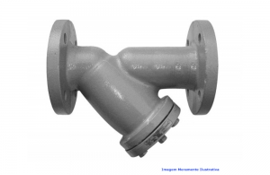 FILTRO Y FOFO 125LBS FLANGE ANSI DN 2.1/2