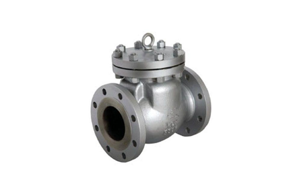 Válvula de Retenção Portinhola - 125 Libras