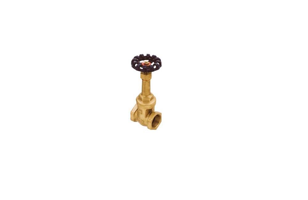 Válvula Gaveta 150/300 ( 061 )