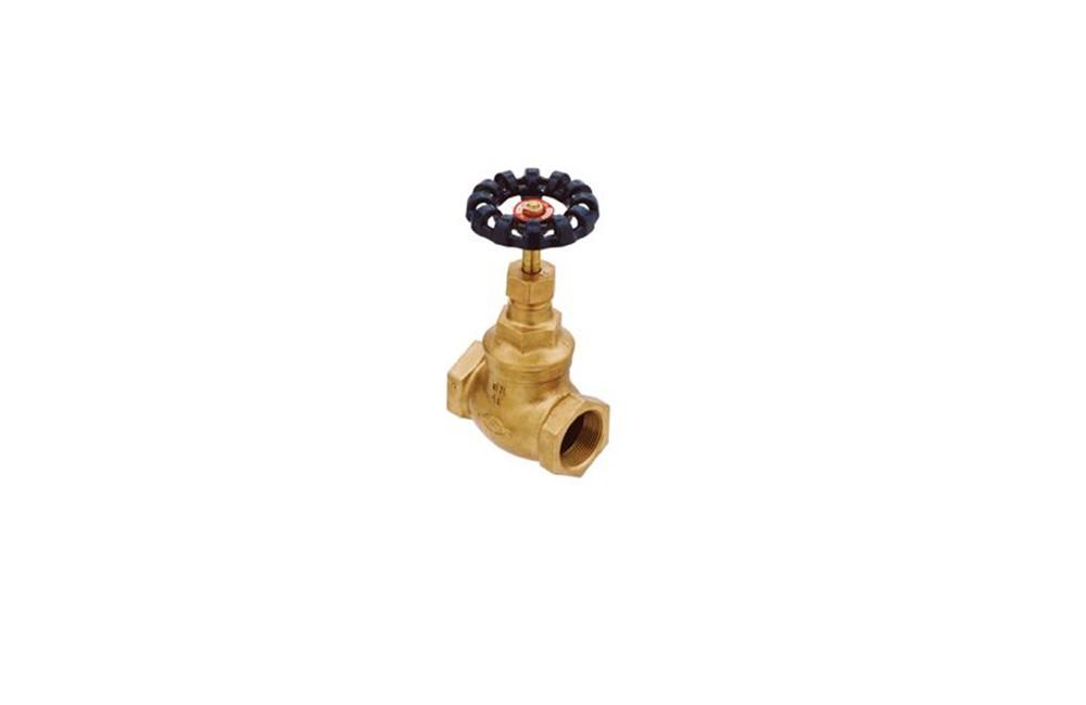 Válvula Globo Vedação Inox ou Teflon 150/300 ( 005 , 004 )