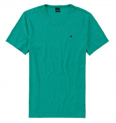 Camiseta Masculina ADULTO Verde Flamê Malwee