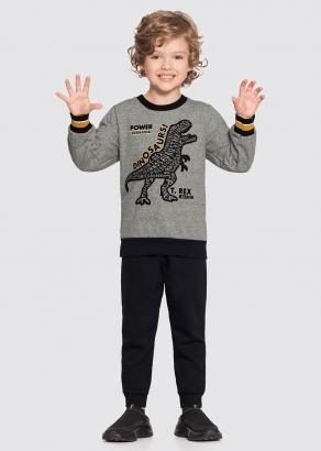 Conjunto Infantil Masculino Inverno Cinza Rex - Alakazoo