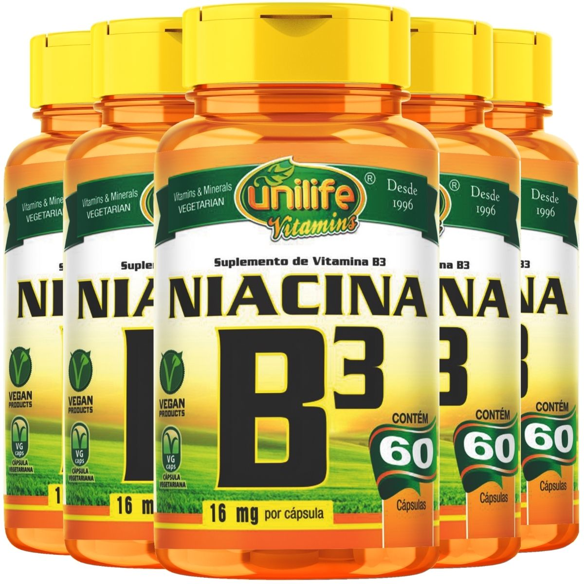 Kit 5 Vitamina B3 Niacina - Unilife 60 Cáps 500mg