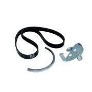 Correia elastica dayco ford focus 1.6 16v 11 >