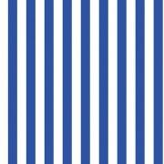 Folha de EVA Listrado Azul/Branco 40x48 2mm com 10 un