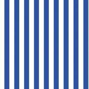 Folha de EVA Listrado Azul/Branco 40x48 1,5mm com 10un
