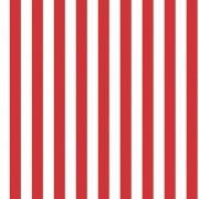 Folha de EVA Listrado Vermelho/Branco 40x48 2mm com 10 un