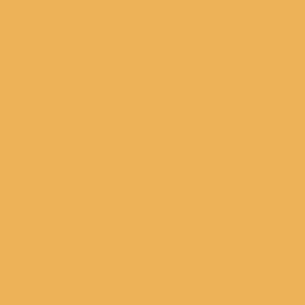 Folha de EVA Liso Mostarda 40x48cm 1,5mm pacote com 10un