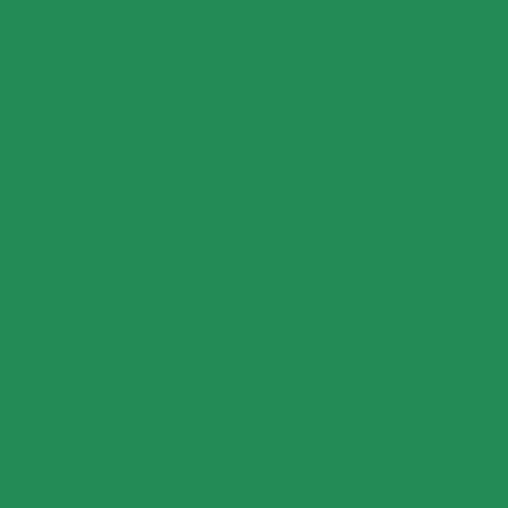 Folha de EVA Liso Verde Folha 40x48cm 1,5mm pacote com 10un