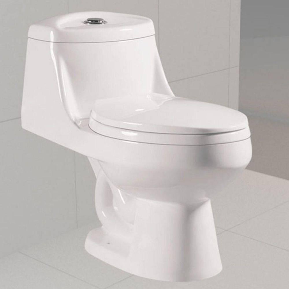 Vaso Sanitário Monobloco Cerâmica Com Caixa Acoplada Pelegrin Pel-6003