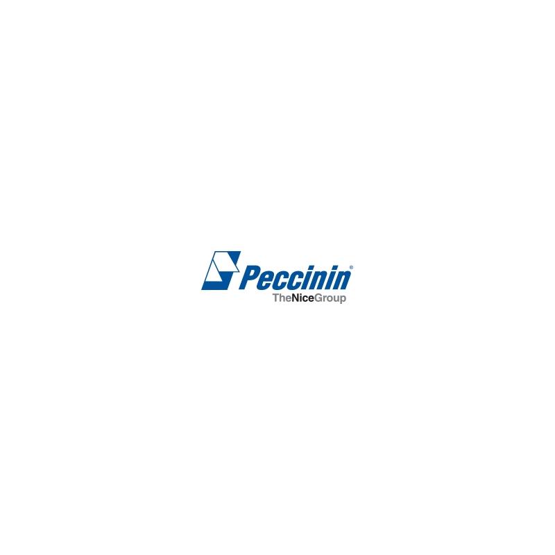 Placa Central CP 4010F para Motor Peccinin  - CFTV Clube | Brasil