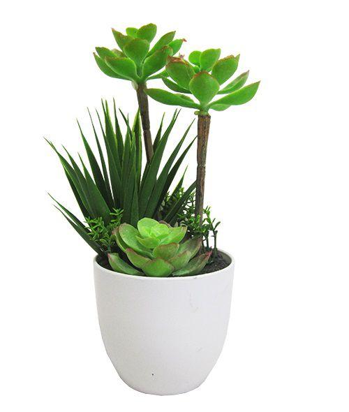 Flor Artificial Suculenta com Vaso Redondo de Plástico 28X10 cm Ø