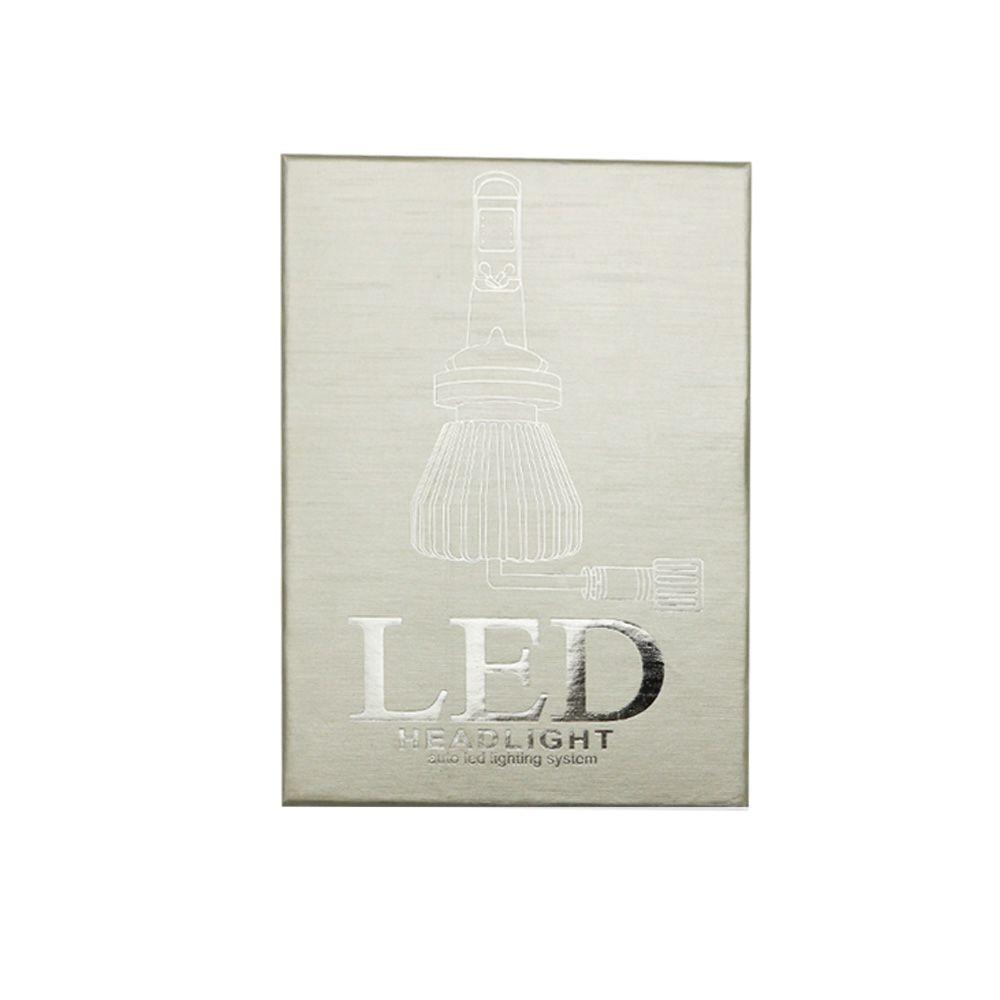 Par da Lâmpada Super LED 2D Encaixe H4 Marca D_Max