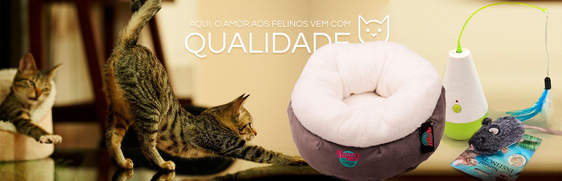 Conforto e qualidade para seu gato