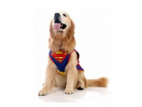 Fantasia para Cachorro Superman™ Licenciado