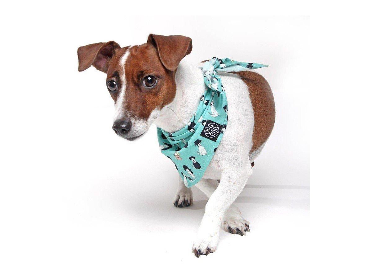 Bandana Dog&Roll DogStar Blue - M