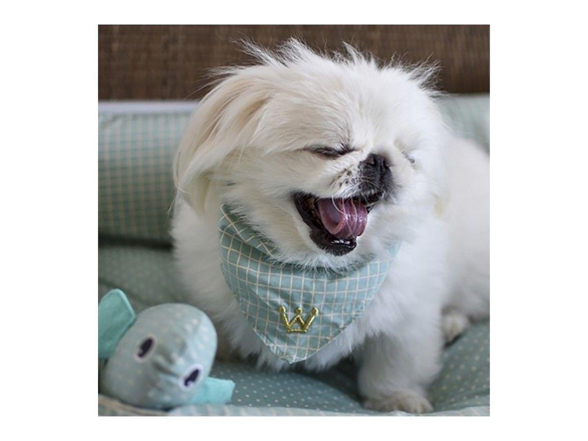 Bandana Pet Woof Classic Deep II Tiffany
