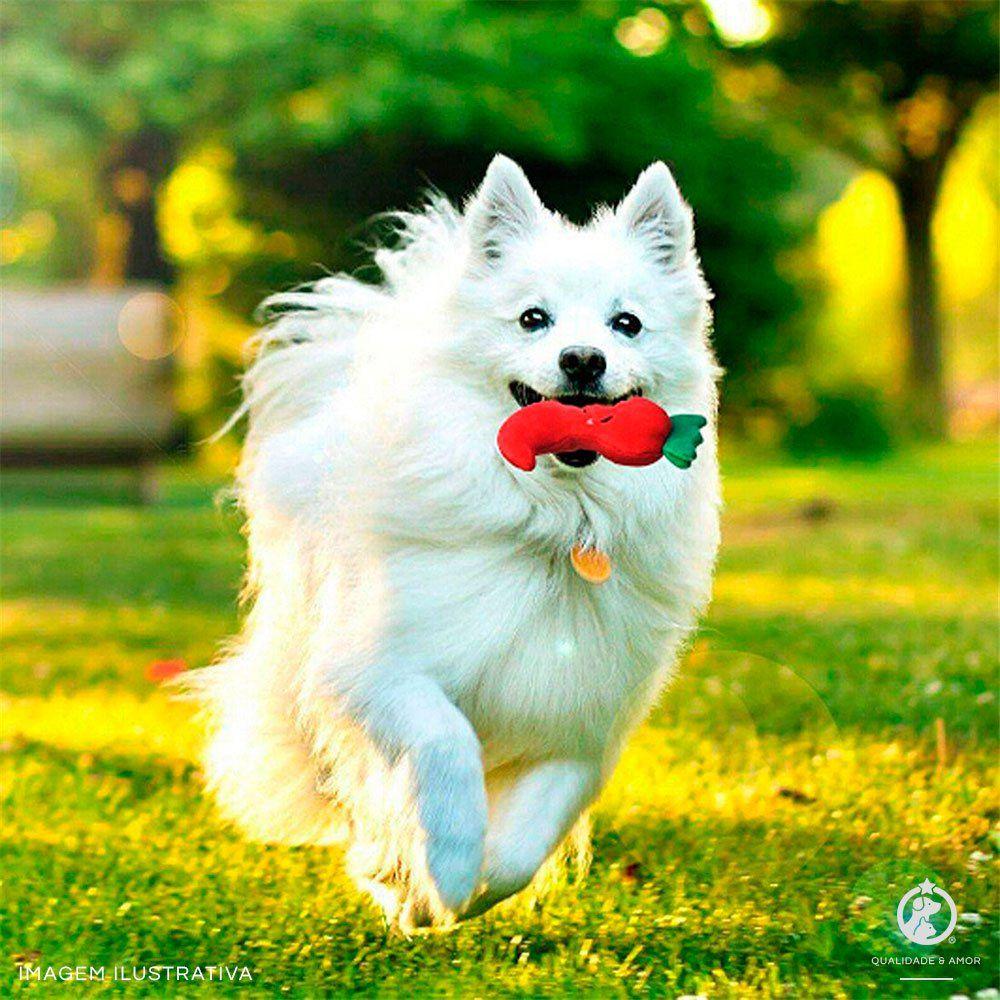 Brinquedo para Pet em Pelúcia - Abóbora