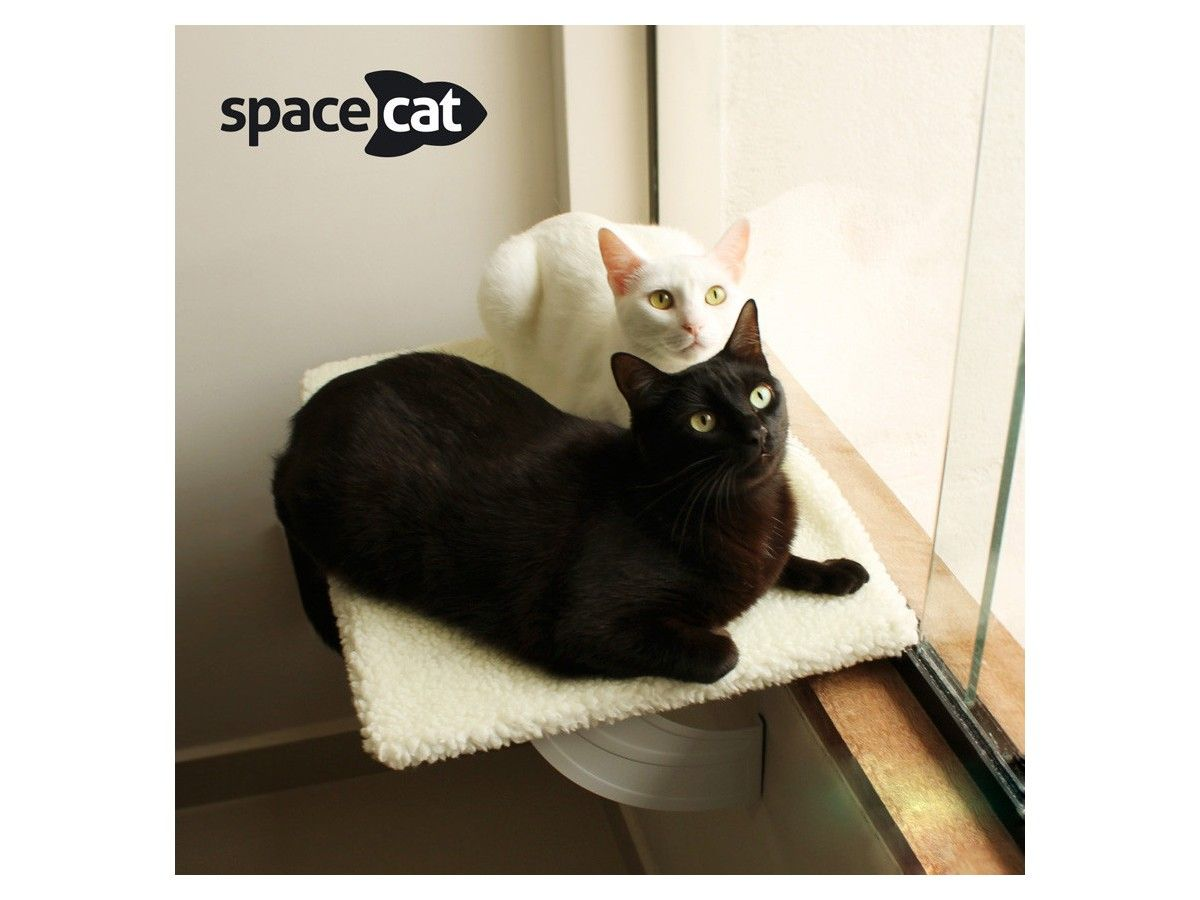 Cama Spacecat Gatton