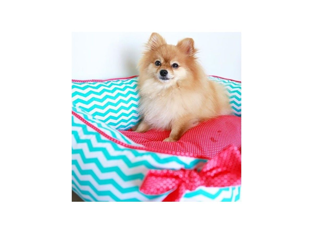 Cama Woof Classic Laço Pic Nic Blueberry