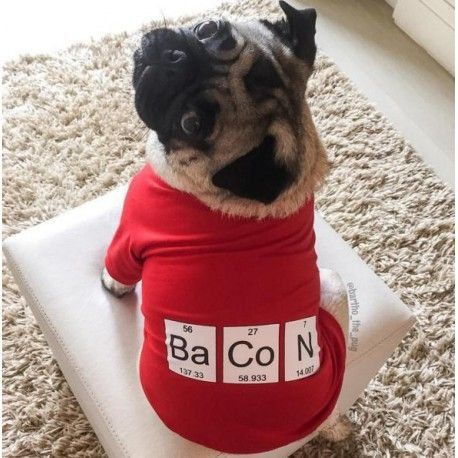 Camiseta Bacon Yo Dog