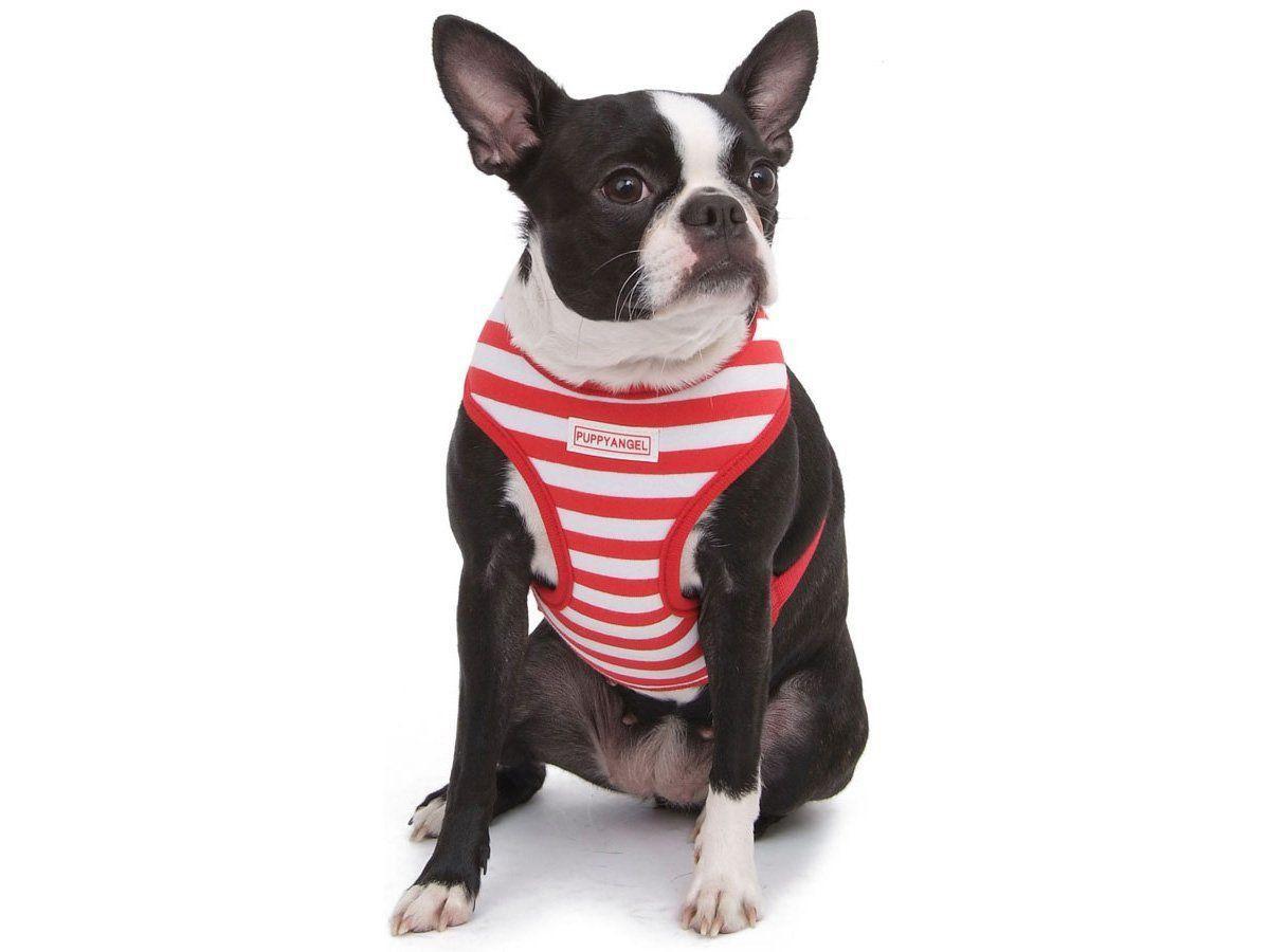 Coleira Peitoral Puppy Angel Cheerful Red - M